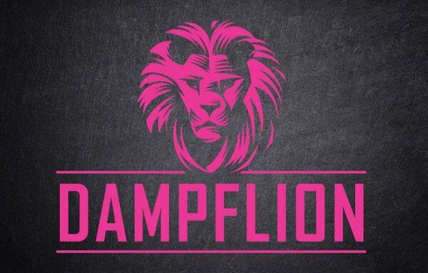 DampfLion Aroma 20ml PINK LION (Pfirsich, Kaktus, Gurke, Vanille)